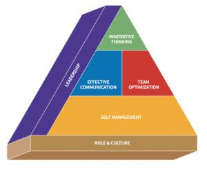 140729_Salaried Entrepreneur Pyramid