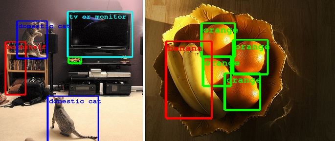 image-recognition